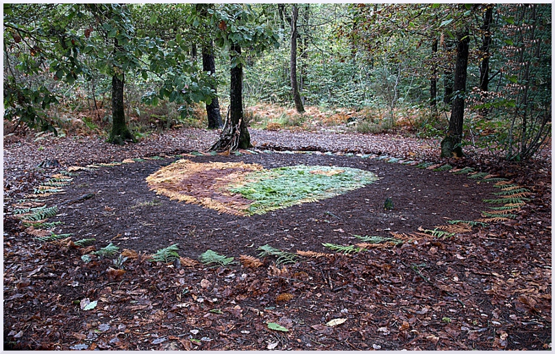 Land art Coeur de fougères, Michel Jobard