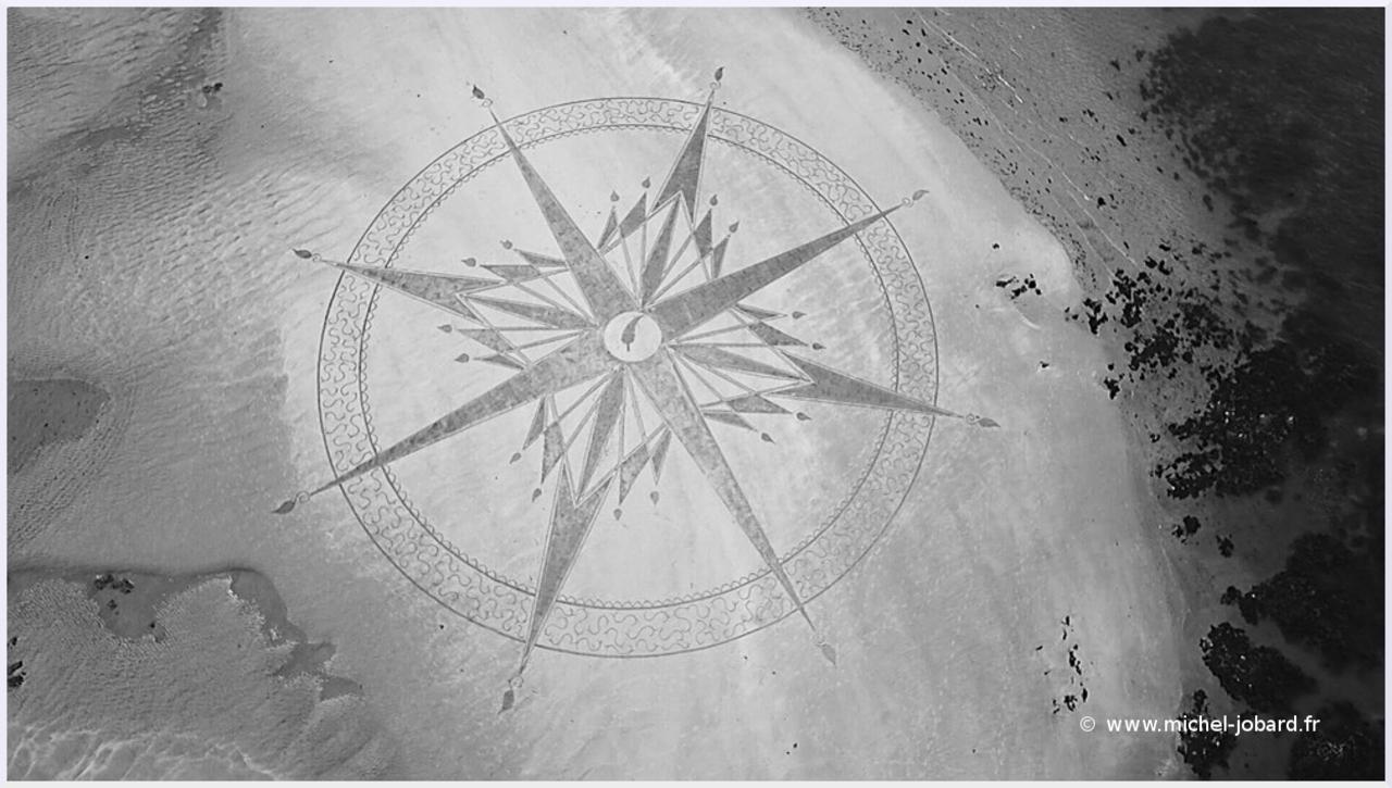 Beach art Plume 03.jpg