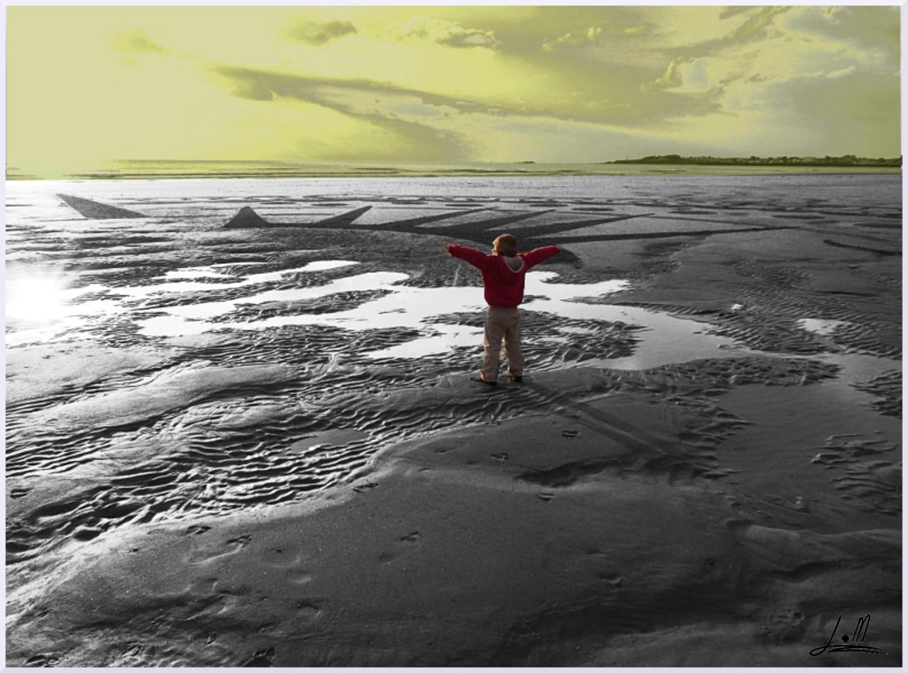 Fresque Beach art L'envol, Michel Jobard