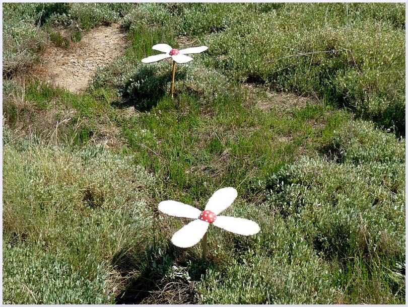 Land art Fleur de sel, Michel Jobard