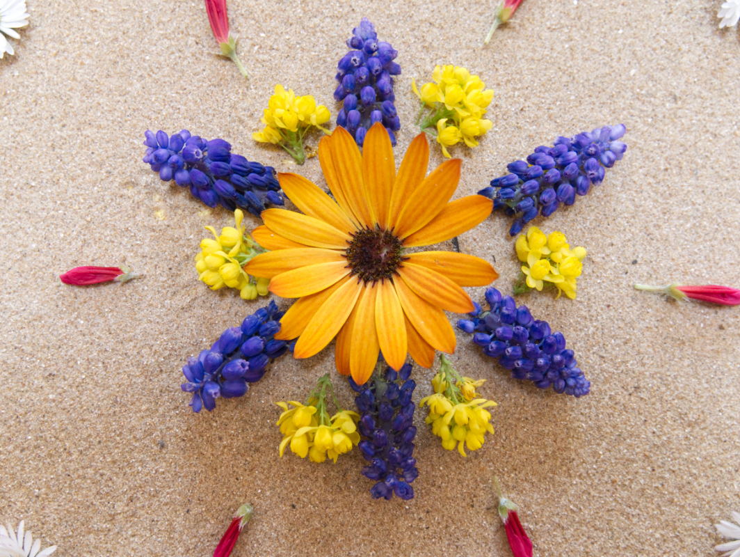 Mandala de printemps 01 P1110503